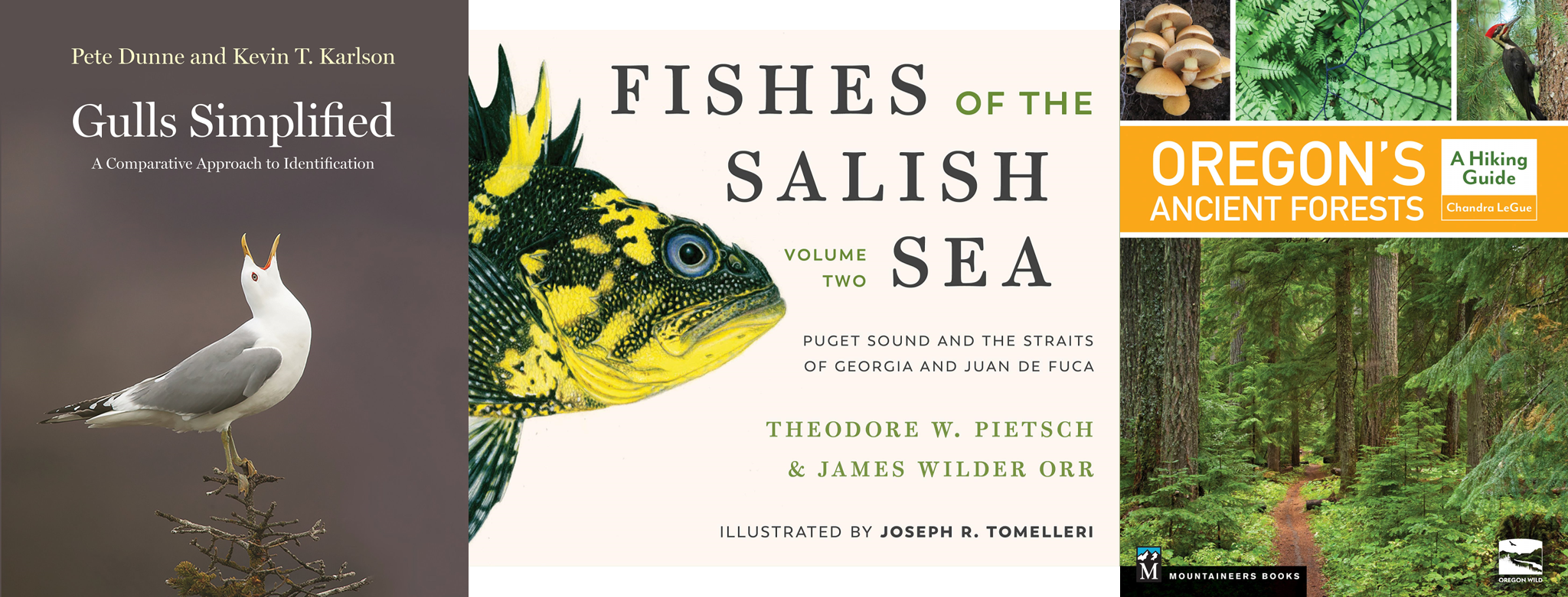 Gulls simplified, Fishes of the Salish Sea,  Oregon's ancient forests