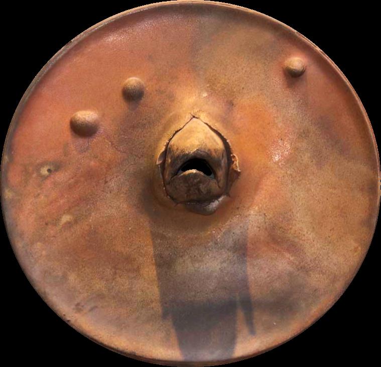 Chinook plate image