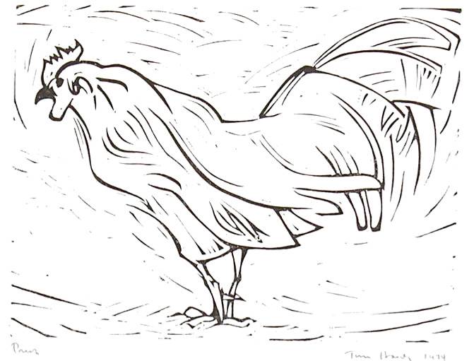 Rooster image